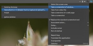 Best Free Screenshot and Screen Capture Software 2012